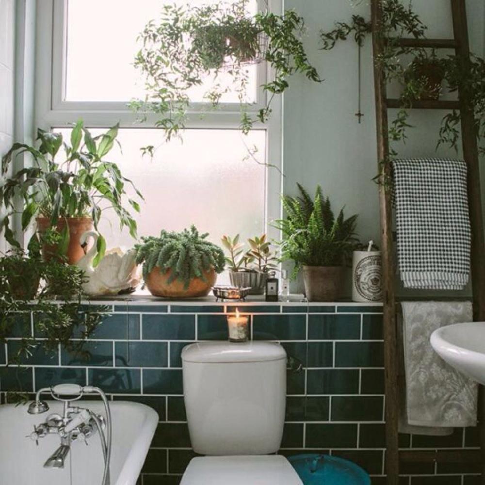 Trend: een botanische badkamer - Alles om van je huis je Thuis te ...