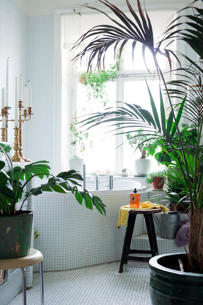 Bamboe Planten Badkamer ~ Trend een botanische badkamer  Alles om van je huis je Thuis te