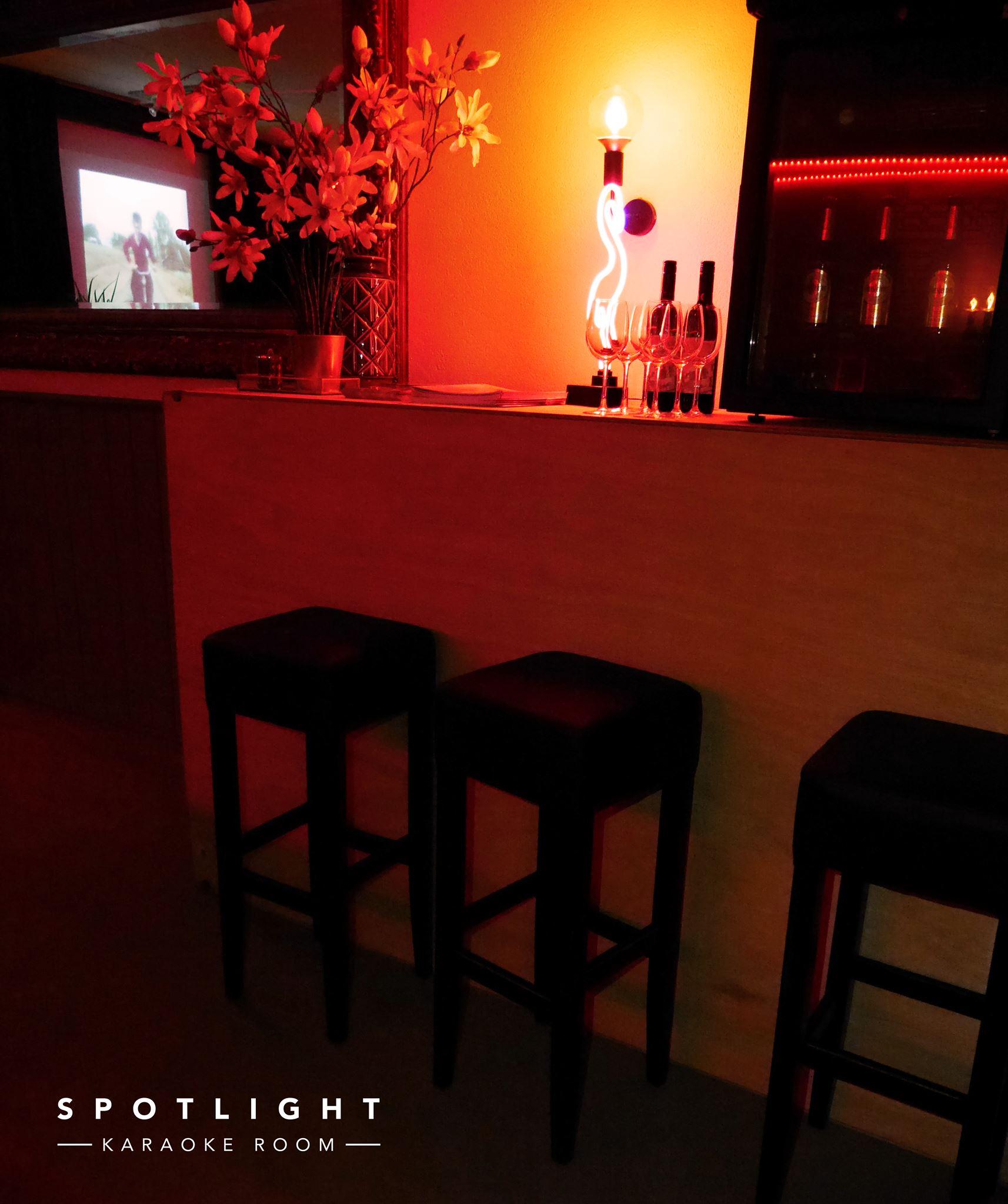 retro-karaoke-prive-spotlight