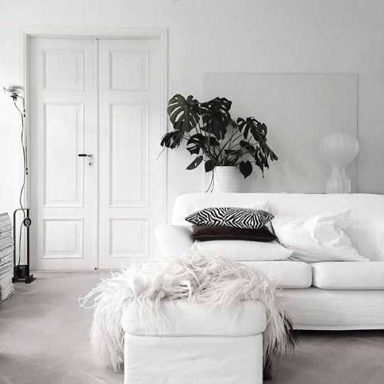 All white interieur